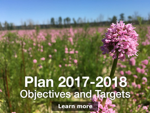 Environmental Objectives and Targets