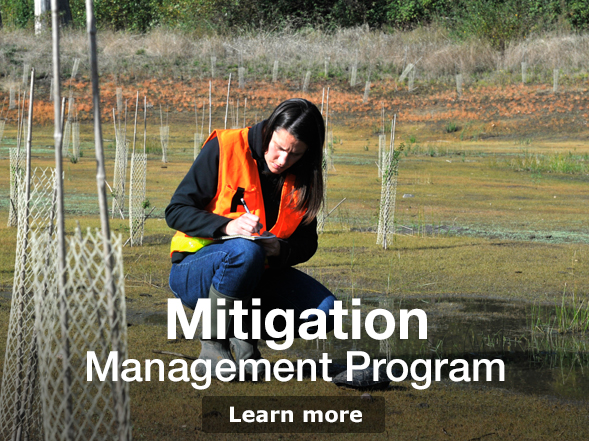 Environment Home Mitigation Program