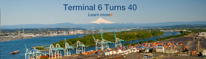 Terminal 6 Turns 40