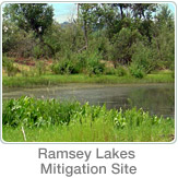 Mitigation Ramsey Lake