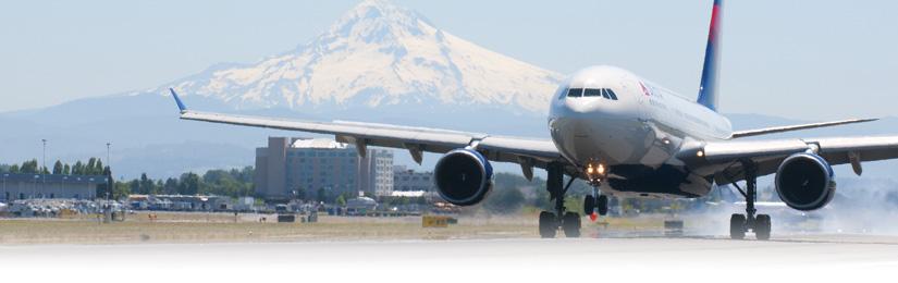 International Arrivals